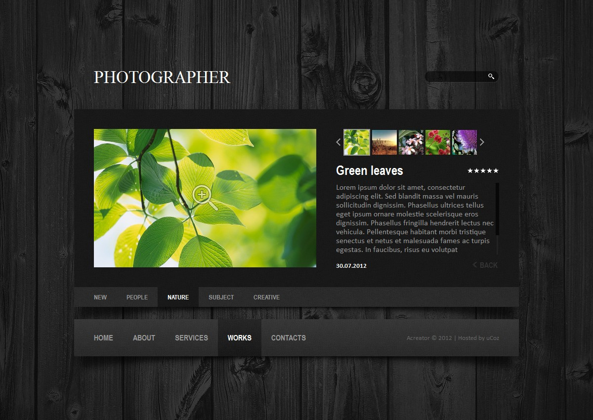 скачать шаблон сайта для фотографа:
